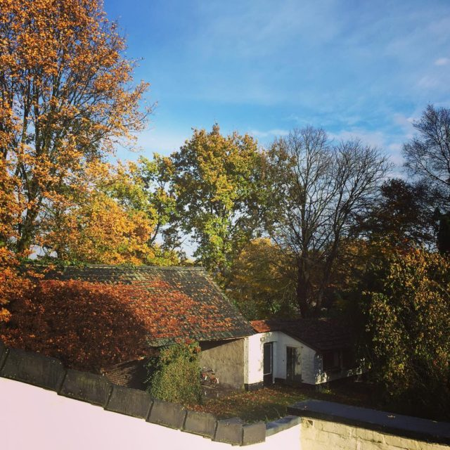 Herfst op HoffenterHof! herfst autumn hoffenterhof zon finallysun